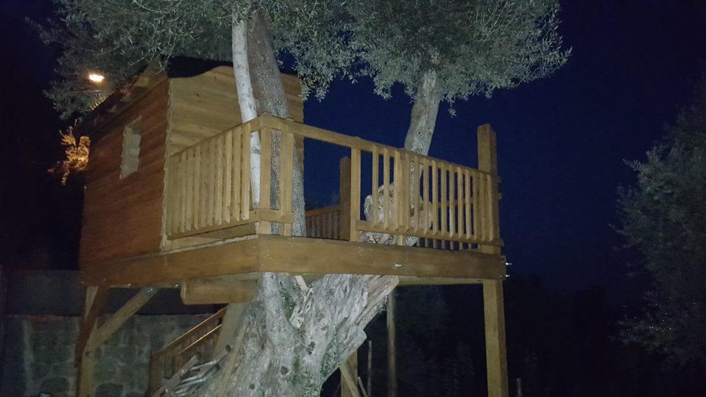 Casa da árvore, aspeto lateral